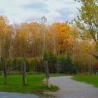 Fresh Air, Fresh Colours
